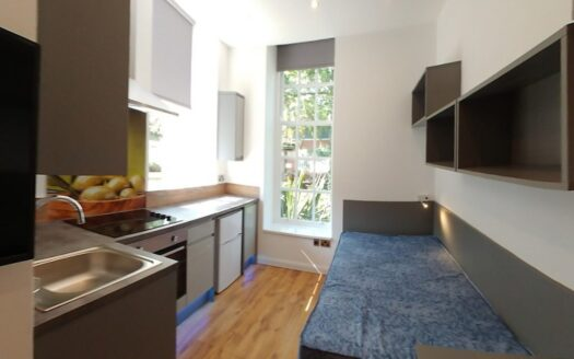 Studio 7, A City View, kitchen
